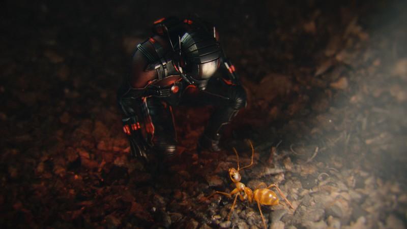 Marvel's Ant-Man<br /> <br /> Scott Lang/Ant-Man (Paul Rudd)<br /> <br /> Photo Credit: Film Frame<br /> <br /> © Marvel 2015