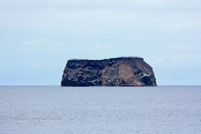 Isla Daphne Major or Minor? 11/08/09
