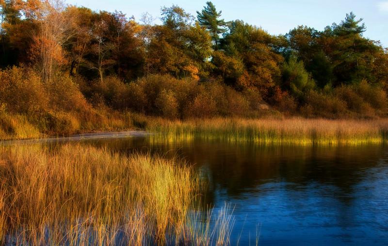Grassy Inlet