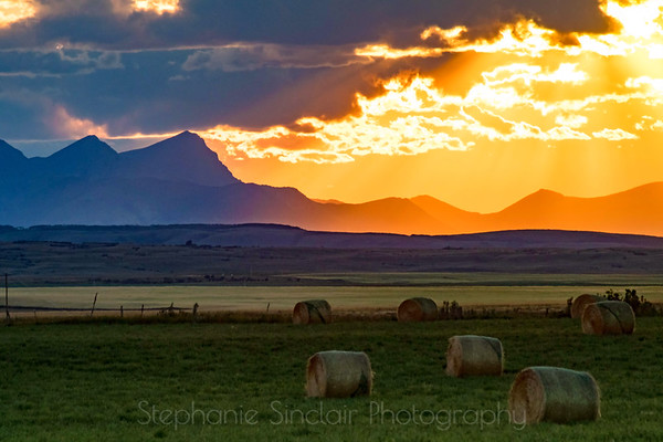 Where the Prairie Meets the Mountains