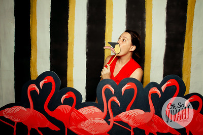 Let's Flamingle-0006