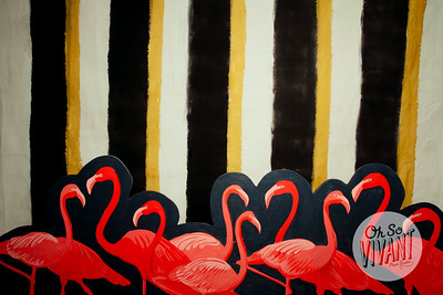 Let's Flamingle-0007