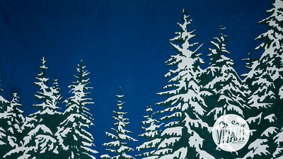 Backdrop-SnowyTrees-Big