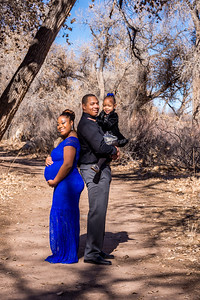Smith Maternity Session-4946