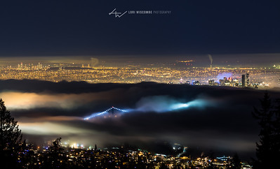 A foggy night on Cypress