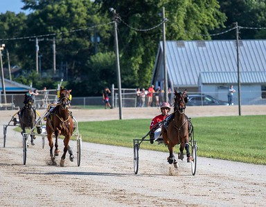 Charming Kash,  Horse Fly, Winning Distance