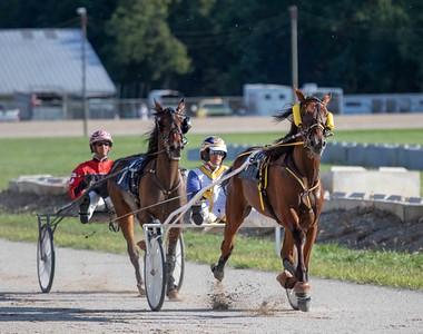 Winning Distance, Horse Fly
