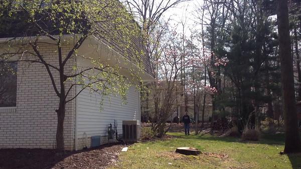 Ohio property and rental