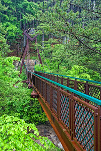 Suspension bridge over Cedar Falls