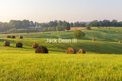 Hay Field (Pendleton County)