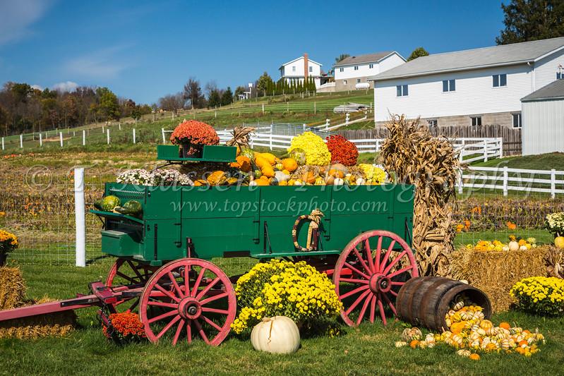 A fall farm produce display near Berlin, Ohio, USA.