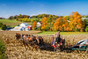 Amish horse drawn farm implements on the field near Berlin, Ohio, USA.