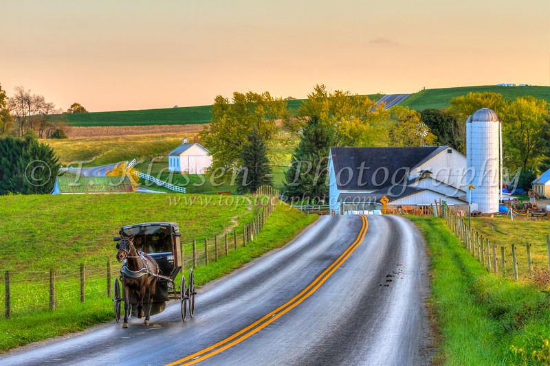 Amish horse and buggy along the country roads near Berlin, Ohio, USA.