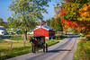 A large Amish farm home with horse and buggy  near Berlin, Ohio, USA.