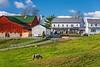An Amish farm with house and barn near Charm, Ohio, USA.
