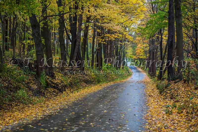 A rural road through the forest with fall foliage color near Winesburg, Ohio, USA.