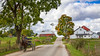 Amish horse and buggies along the rural roadsways near Kidron, Ohio, USA.