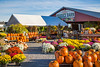 Pumpkins and fall market at Miller's Produce Barn in rural, Ohio, USA.