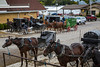 Amish horse and buggies at a hitching post in Dalton, Ohio, USA.