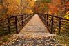 Beaver Creek Reservation - Oct192012_4640 - Amherst, Ohio
