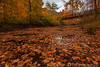 Beaver Creek Reservation - Oct192012_4577 - Amherst, Ohio