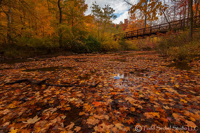 Beaver Creek Reservation - Oct192012_4577 - Amherst, Ohio