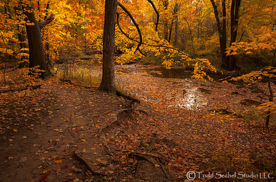 Beaver Creek Reservation - Oct192012_4550 - Amherst, Ohio