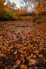 Beaver Creek Reservation - Oct192012_4572 - Amherst, Ohio