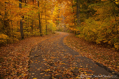 Beaver Creek Reservation - Oct192012_4538 - Amherst, Ohio