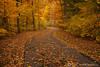 Beaver Creek Reservation - Oct192012_4538 - Amherst, Ohio