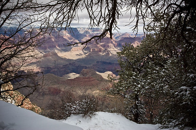 Grand Canyon-2768