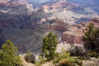 Grand Canyon-2437