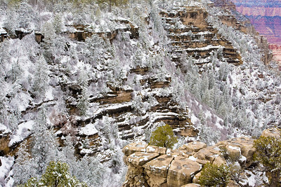 South Rim of the Grand Canyon the morning after a sudden April blizzard.