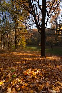 Schoepfle Garden - Oct222012_4776 - Birmingham, Ohio