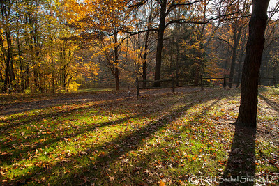 Schoepfle Garden - Oct222012_4835 - Birmingham, Ohio