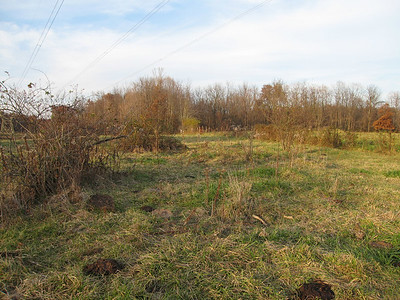 Site of Laymon School House, Lynchburg (Webertown), Ohio.  The land was donated by Tavner Laymon in 1857.
