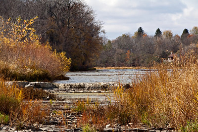 Along the Maumee River - Late Autumn