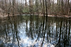 Pond in the Black Swamp, Secor Park