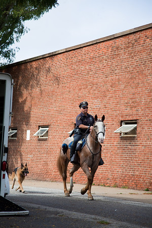stables-0252