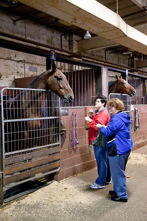 stables-0056