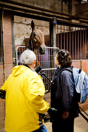 stables-0054