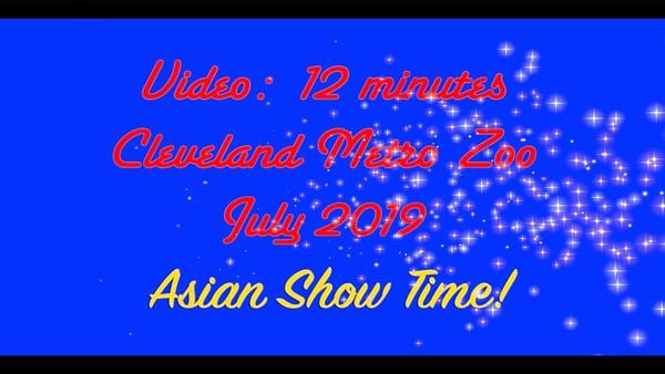 Video:  12 mins - Asian Lantern Show, Cleveland Metro Zoo, July 2019 - Ray & Penny