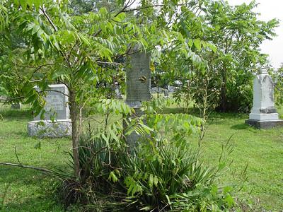 Tavner and Priscilla Laymon marker Troutwine Cemetery, Lynchburg, Ohio