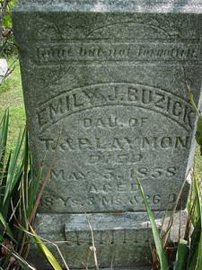 Emily J. Laymon Buzick Troutwine Cemetery, Lynchburg, Ohio