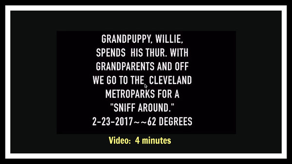 Metroparks with Willie, 2-23-2017