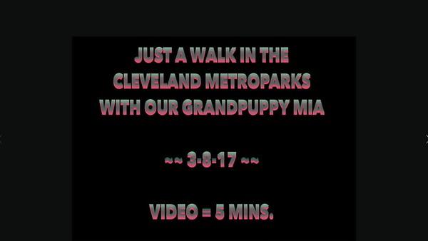 CLE Metro 3-8-17, Penny, Ray & Mia