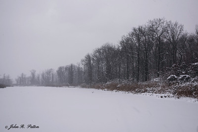 Winter at Mentor Marsh