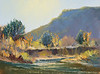 "Stream entering Rio Grande.    9""x12"" oil  Plein Air"