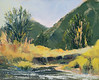 "Stream.      8""x10"" oil  Plein Air"