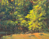 "Shoreline Early Morning at Lake Lisenby  8""x10""  Oil   Plein Air"